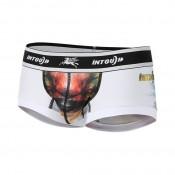 Boxers (46)